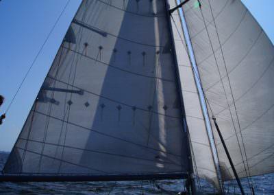 jacht żaglowy radogost konik morski